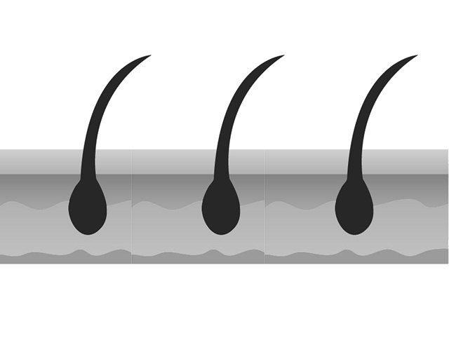 mouhatu2 仲良くなりたいなら、相手をよく知ろう!「毛髪の概略」編