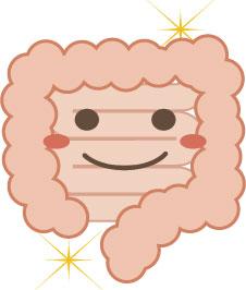 724383 「幸せホルモン」は腸でできる?驚くべき腸の働きとは?