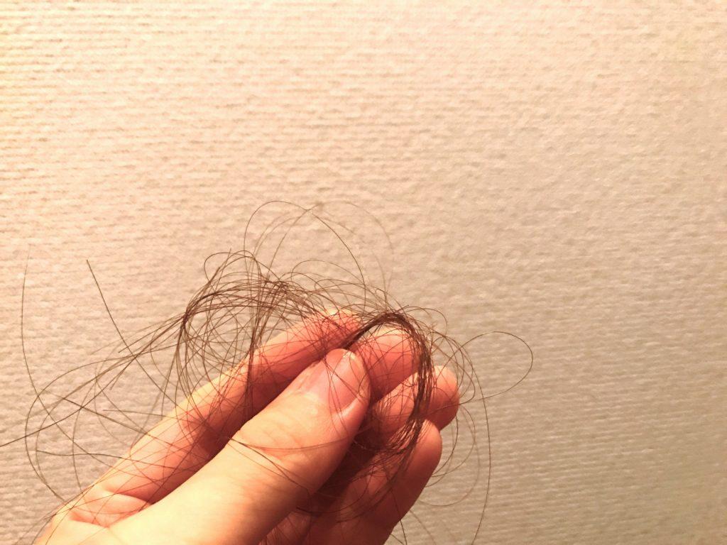 c713aaf5916189d9dca28577be6c46f3 m 1024x768 なぜヒトは頭にだけ毛があるの?髪の毛の役割とは?