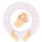 皮膚から毛包ができる!母親の胎内から始まっている?