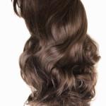 毛の位置と方向はどう決まる?